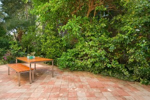 PATIO1_2_59_OSullivan_Rd_Rose_Bay