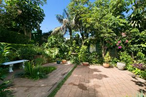 GARDEN_668_Old_South_Head_Rd_Rose_Bay